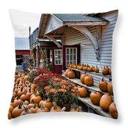 Farmstand Throw Pillow by Edward Sobuta