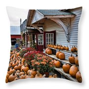 Farmstand Throw Pillow by Edward Sobuta