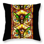 Feathered Folly Throw Pillow by Donna Blackhall