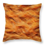 Ferrous Water Stream Throw Pillow by Gaspar Avila