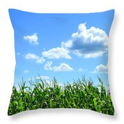 Field Of Corn In August Throw Pillow by Sandra Cunningham
