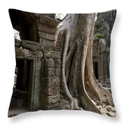 Fig Tree Growing Over Crumbling Ruins Throw Pillow by Rebecca Hale