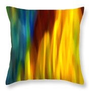 Fire and Water Throw Pillow by Amy Vangsgard