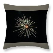 Fireworks 002 Throw Pillow by Larry Ward