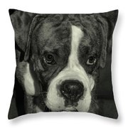First Day Home Throw Pillow by DigiArt Diaries by Vicky B Fuller
