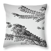 First Signs Of Spring II Throw Pillow by DigiArt Diaries by Vicky B Fuller