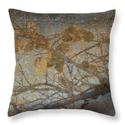Florida Sea Grape Throw Pillow by Joseph G Holland
