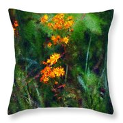 Flowers in the Woods at the Haciendia Throw Pillow by David Lane