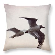 Flying Throw Pillow by Angela Doelling AD DESIGN Photo and PhotoArt
