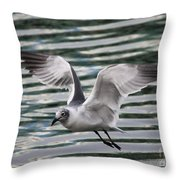 Flying Seagull Throw Pillow by Carol Groenen