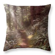 Forest Path Throw Pillow by Leland D Howard