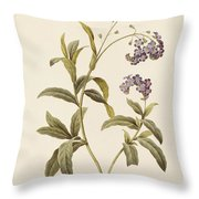 Forget Me Not Throw Pillow by Pierre Joseph Redoute