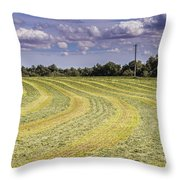 Freshly Mown Hay  Throw Pillow by John Trax
