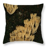 Fungi Grows Out Of A Fallen Log In An Throw Pillow by Michael S. Quinton