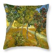 Garden of Saint Paul's Hospital Throw Pillow by Vincent van Gogh
