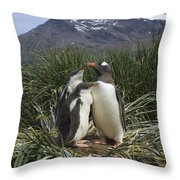 Gentoo Penguin And Young Chicks Throw Pillow by Suzi Eszterhas