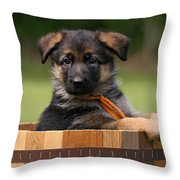 German Shepherd Puppy In Planter Throw Pillow by Sandy Keeton