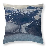 Glacial Curves Throw Pillow by Mike Reid