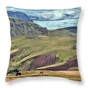 Glacier Mountains Meadows Horses Throw Pillow by David Halperin