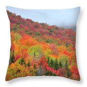 Glorious Throw Pillow by Betty LaRue