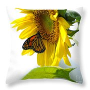 Glowing Monarch on Sunflower Throw Pillow by Edward Sobuta