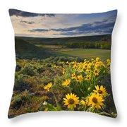 Golden Hills Throw Pillow by Mike  Dawson