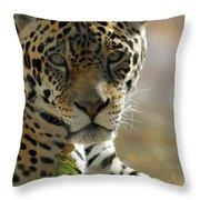 Gorgeous Jaguar Throw Pillow by Sabrina L Ryan