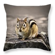 Got Nuts Throw Pillow by Evelina Kremsdorf