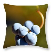 Grape Throw Pillow by Catherine Lau
