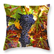 Grapes On Vine In Vineyards Throw Pillow by Garry Gay