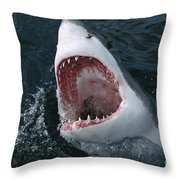 Great White Shark Jaws Throw Pillow by Mike Parry