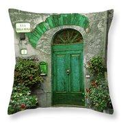 Green Door Throw Pillow by Karen Lewis