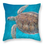Green In Blue Throw Pillow by Kimberly Mohlenhoff