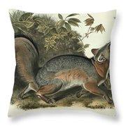 Grey Fox Throw Pillow by John James Audubon