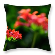 Growing Up Throw Pillow by Lois Bryan