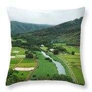 Hanalei Taro Fields Throw Pillow by Michael Peychich