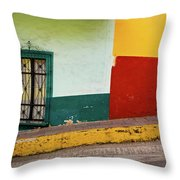 Hard Knock Life Throw Pillow by Skip Hunt