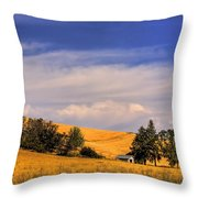 Harvested Throw Pillow by David Patterson