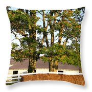 Hay Bales And Trees Throw Pillow by Todd A Blanchard