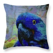 He Just Cracks Me Up Throw Pillow by Jan Amiss Photography