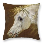 Head Of A Grey Arabian Horse  Throw Pillow by Martin Theodore Ward
