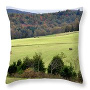 Heart Of The Country Throw Pillow by Jan Amiss Photography