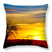 Here Comes The Sun Throw Pillow by James BO  Insogna