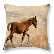 High Stepping Throw Pillow by Mike  Dawson