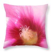 Hollyhock Closeup Throw Pillow by Kathy Yates
