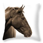 Horse Head Study Throw Pillow by Heather Swan