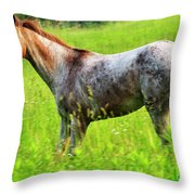 Horse in Pasture Field Throw Pillow by Thomas R Fletcher