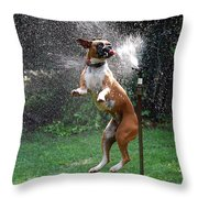 How To Handle A Heat Wave Throw Pillow by Skip Willits