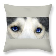 Husky Eyes Throw Pillow by Jane Schnetlage