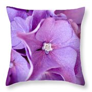 Hydrangea Throw Pillow by Frank Tschakert
